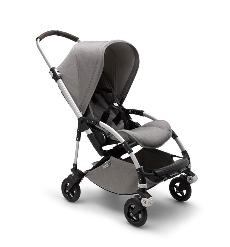 BUGABOO BEE5 EXPOSURE MINERAL